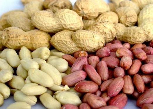 1749 Корисні властивості арахісу