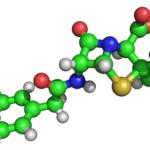 1831 Навіщо потрібні амінокислоти?
