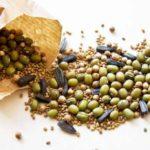 2050 Как правильно заготовить семена?