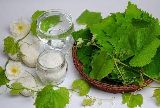 Цікаві страви з виноградного листя