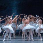 5084 Стопы балерин без пуантов фото: ноги Волочковой