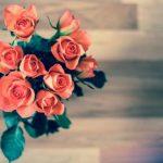 5300 Как правильно выбрать свежие розы в магазине?
