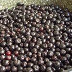 6091 Черная рябина вино в домашних условиях рецепт