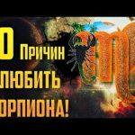 6464 10 причин полюбить Скорпиона